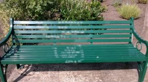 20160815_bench graffiti_low res